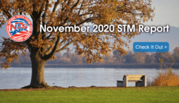 2020-11 STM Report - Social