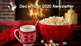 2020-12 Section Newsletter - Post