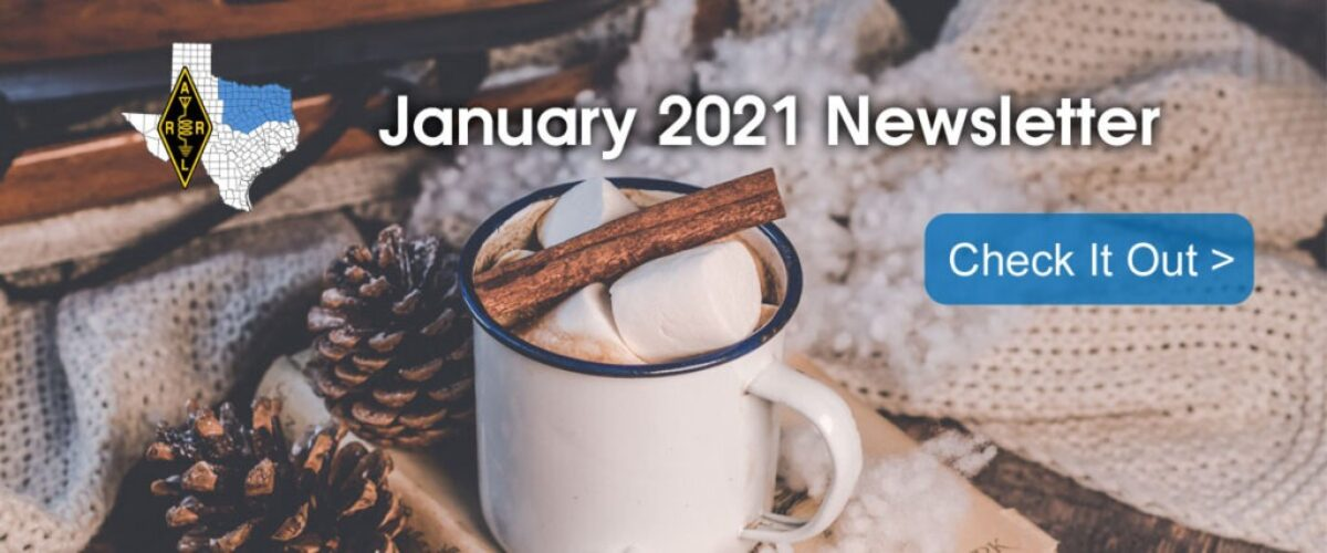 January 2021 Section Newsletter